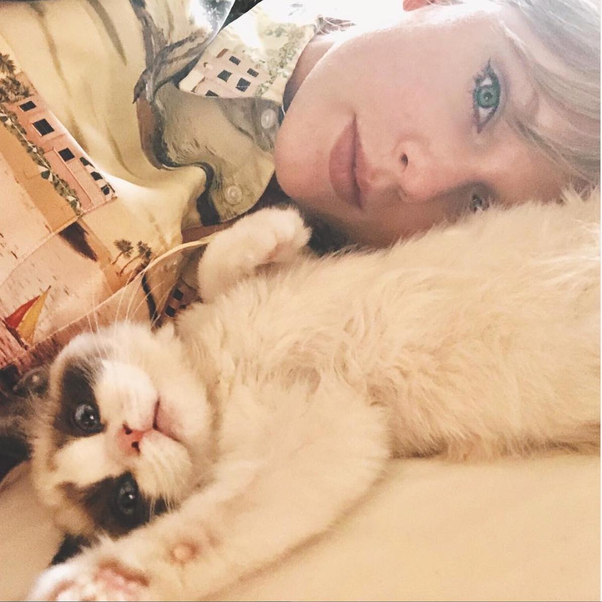 ⑤テイラー・スウィフトが新曲『ME!』のMVに込めたネコのナゾを公開