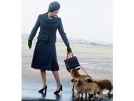 エリザベス女王の愛犬、ホリーが永遠の眠りに。女王のペット愛を振り返る
