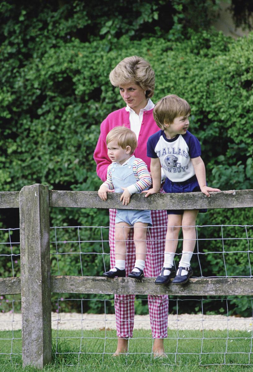 テットベリーにある庭園「ハイグローブ・ロイヤル・ガーデンズ」にて。柵に登って遊ぶ姿は、やんちゃ兄弟そのもの。(1986年) Photo : Getty Images