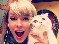 猫ブームはハリウッドでも! セレブ&愛猫のキュートな写真7選