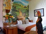 熱帯雨林、コーヒー、アート。エコツーリズムの聖地 中米コスタリカで過ごす休日