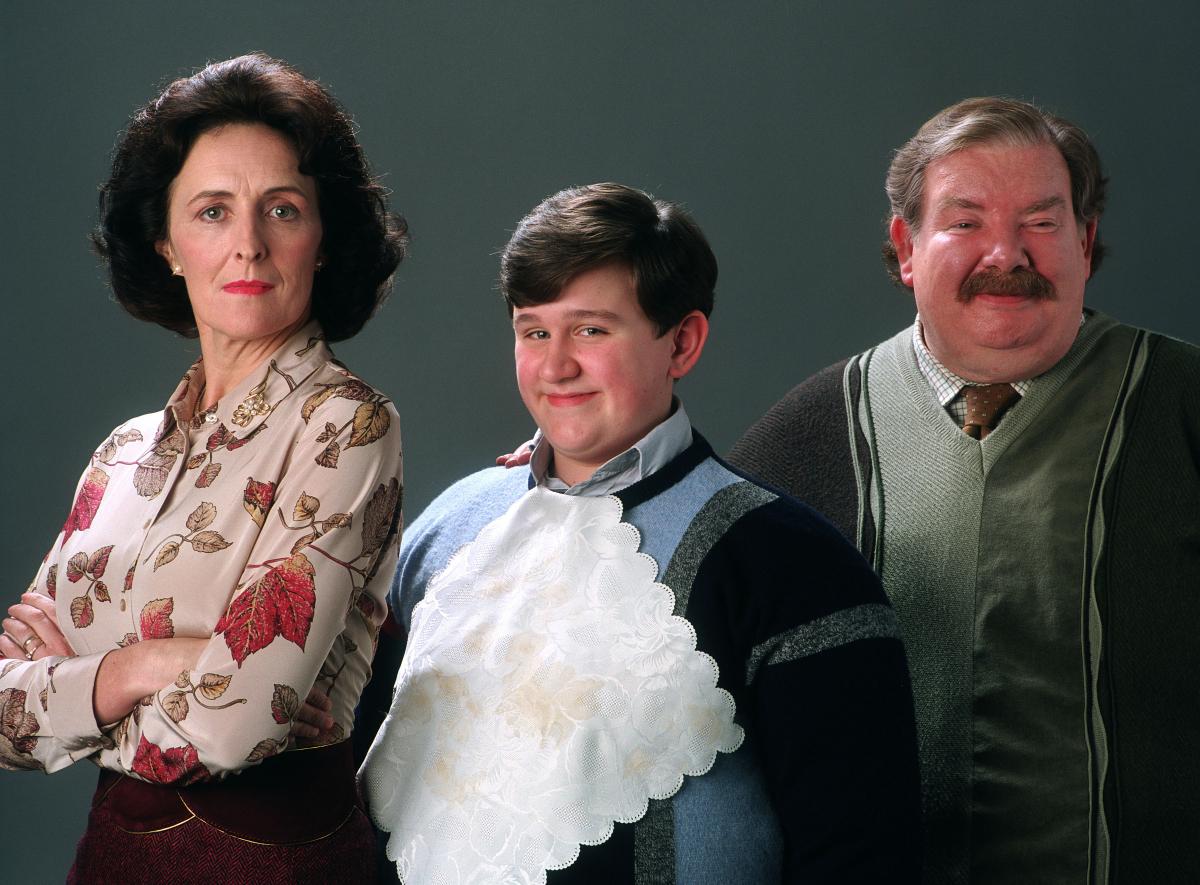 いじわる少年ダドリー役を演じたハリー。