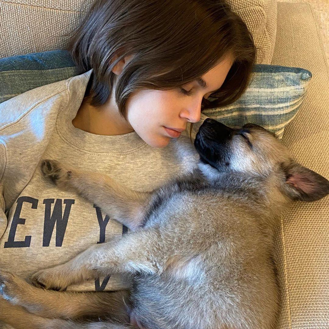 愛犬との寝顔ショットを公開