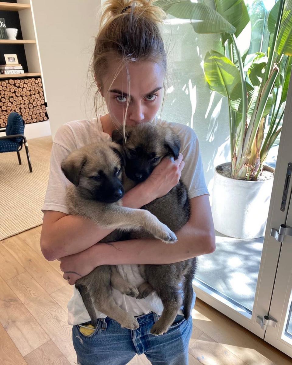 2匹の保護犬を抱き抱えるカーラ