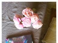 育てたバラで作るゼリーに胸キュン #深夜のこっそり話 #691