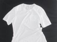夏のユニフォーム! Tシャツコレクション