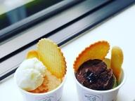 この夏食べたくなるアイスクリーム