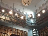 会員制図書館を舞台にキャットウォーキング
