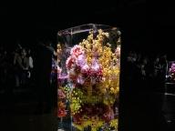 東 信による凍った花のインスタレーションに感動!