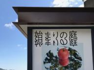 SNS時代の「脳疲れ」に、鈴木康広の「始まりの庭」展