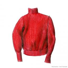 アンデルセンアンデルセンのニット ― 赤い服の話 ―
