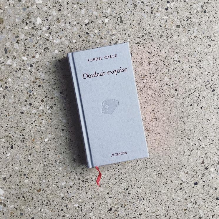 ソフィ カル展の図録。本自体は英文ですが、日本語訳もついているので、じっくりと作品を味わうことができます