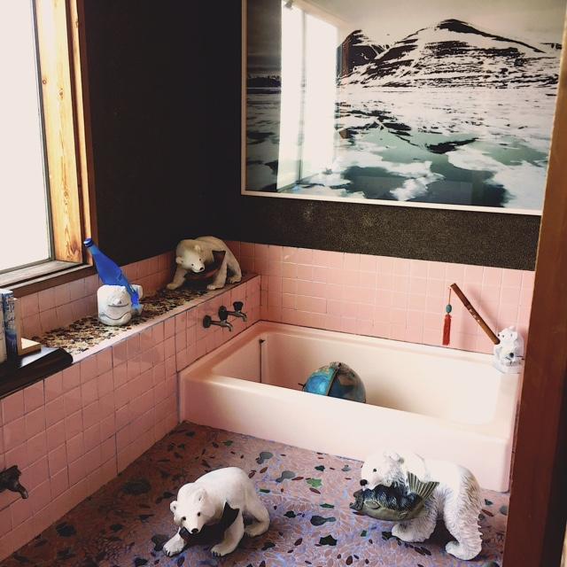 写真家、石川直樹さんの展示「混浴宇宙宝湯」より。かつては芝居小屋や旅館だったこともあり、現在は銭湯となっている施設を利用。これまでにないカオティックな展示は必見