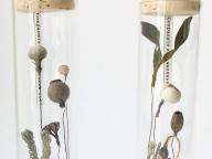 ナウシカの部屋で育つ腐海の植物みたい! 物語を閉じ込めたオブジェが幻想的