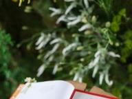 ゲストの前で大好きな詩を読みあげて人前式を