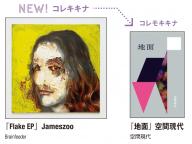 【LICAXXXのコレキキナ vol.2】『Flake EP』Jameszoo