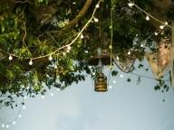 木々や草花に囲まれた幻想的な空間