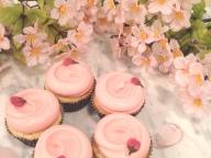 マグノリアベーカリーより日本限定「サクラカップケーキ」が今年も登場