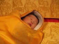 ブータン王子誕生のお祝いに植樹108,000本