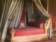 パリ・現代アート・ウイーク。カレン・キリムニックの個展を見に、マルメゾン城へ