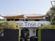 ドバイへ8回目のひとりっぷ®~私がドバイに通う7つの理由④=「Lime Tree Cafe」が好きすぎて。