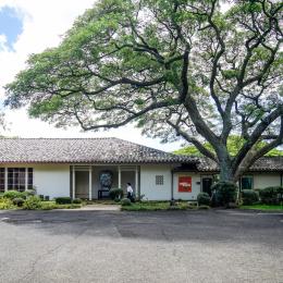 ハワイならでは! 素晴らしすぎる穴場アートスポット『Spalding House』