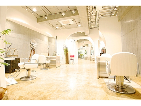 【Cocoon】Salon Data